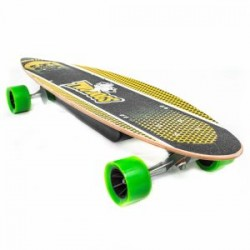 SKATE ELETRICO TWO DOGS LONGBOARD 500W LITHIUM